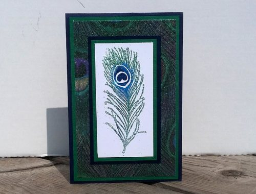 Card - Peacock Collection 1