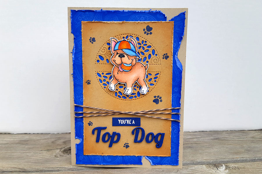 You're a Top Dog